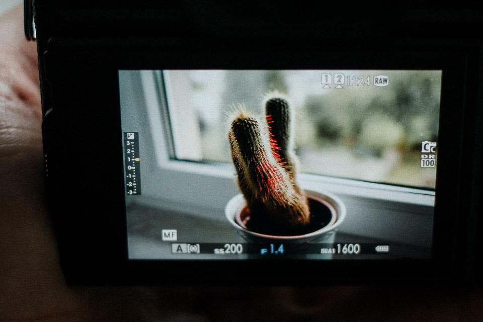 Focus Peaking bei Systemkameras