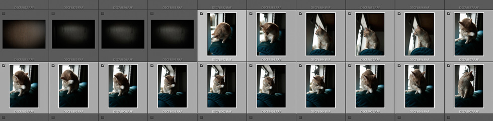 Bildverwaltung in Lightroom: Import Fotos auswählen