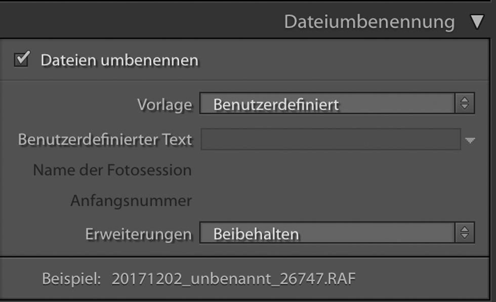 Dateiumbenennung beim Import