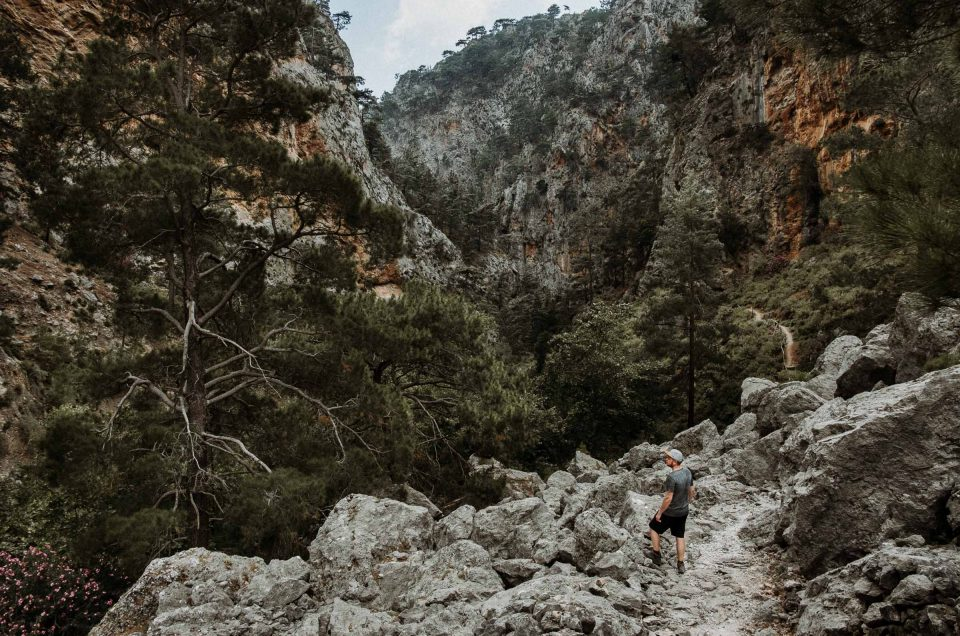 Reisetipps Kreta Urlaub: Von traumhaften Stränden und imposanten Schluchten