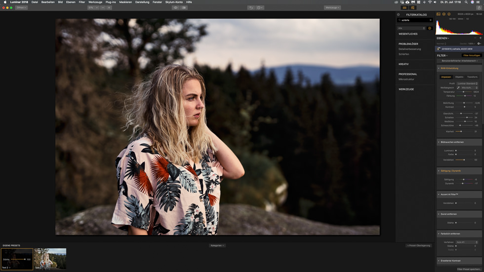 Die Lightroom Alternative Luminar im Review