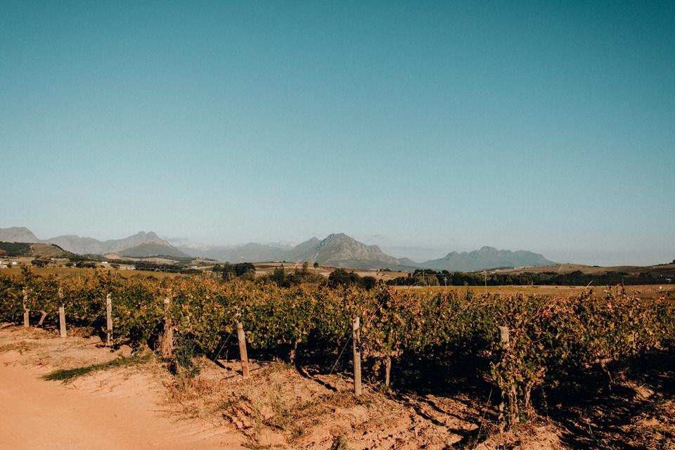 Reisebericht Südafrika - Knysna