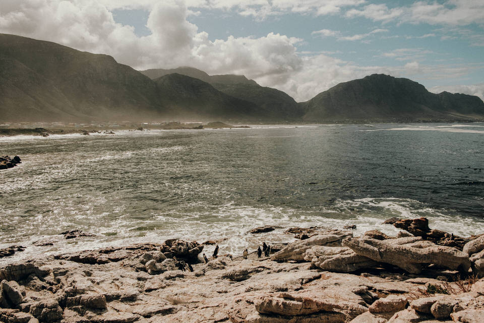 Betty's Bay auf der Garden Route