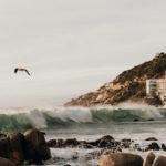 Südafrika Reisebericht: Rundreise als Selbstfahrer - ab Kapstadt entlang der Garden Route