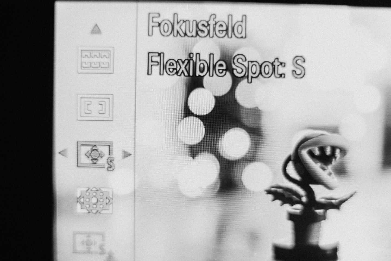 Kamera Fokus Single Spot