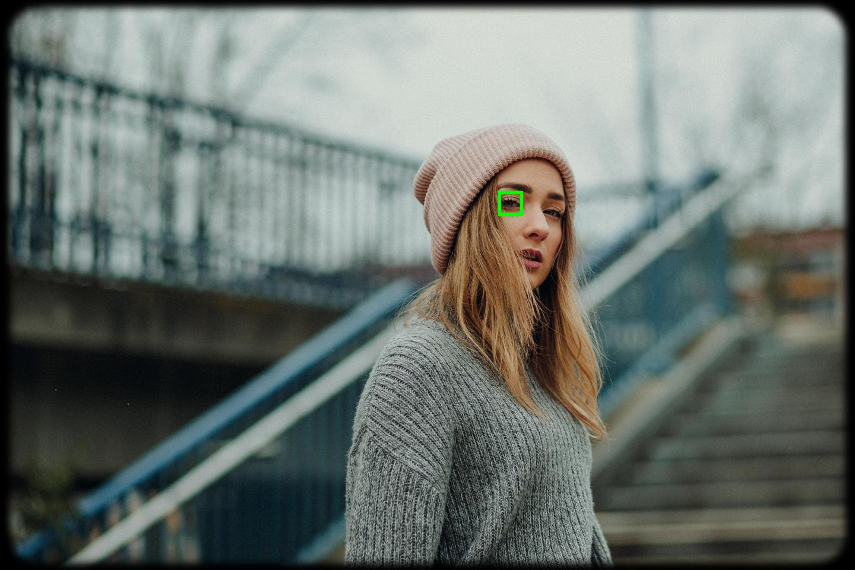 Eye AF Augen Autofokus im Sucher